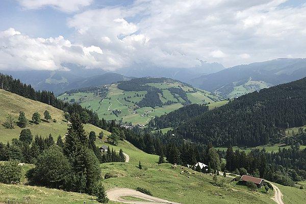 Hinterjetzbach Alm, 2019-08-23T12:28:00+02:00