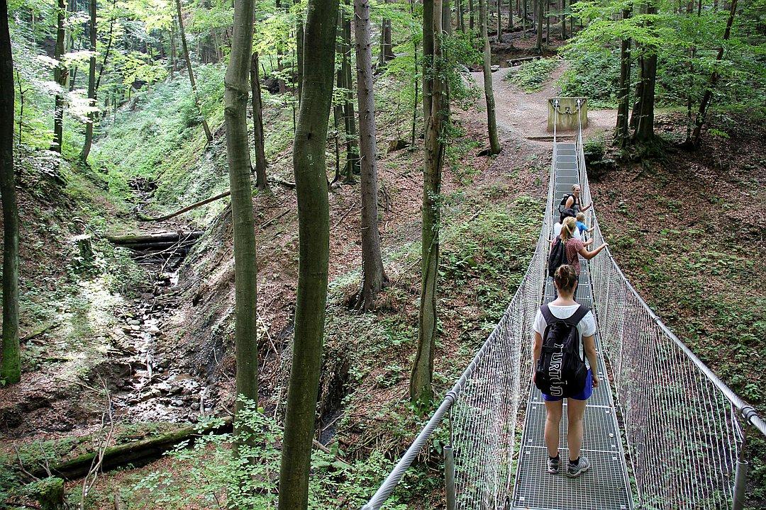 Hängebrücke Altenbachklamm (Panoramaschenke)