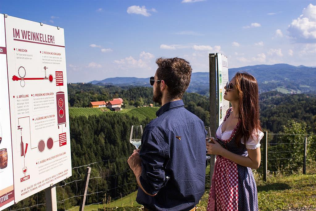 Weinkulturgarten und moderner Klapotetz (W757)