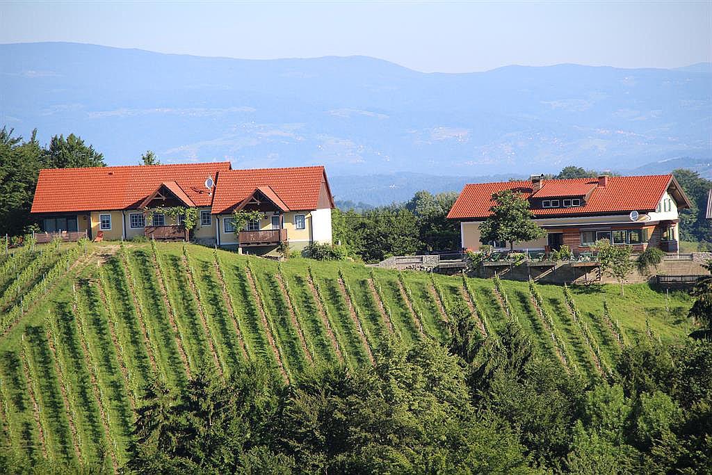 Weingut & Buschenschank Sternat (W260)
