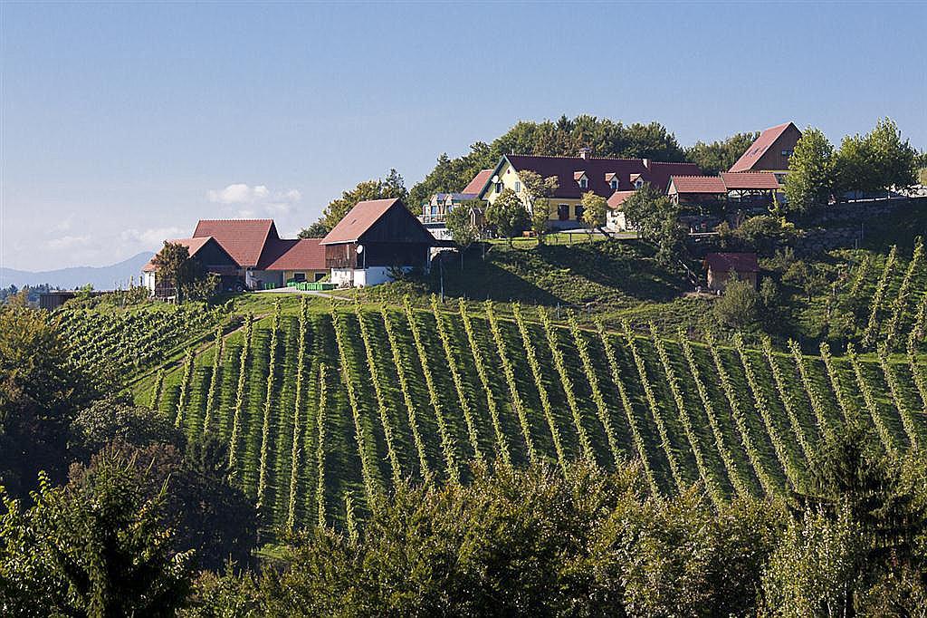 Weingut Klug (W233)