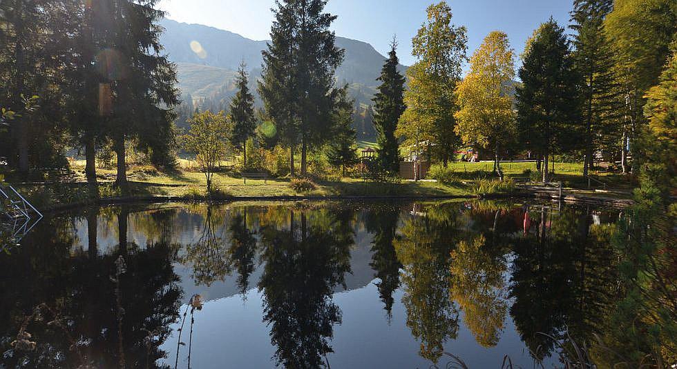Hochmoor Oberjoch